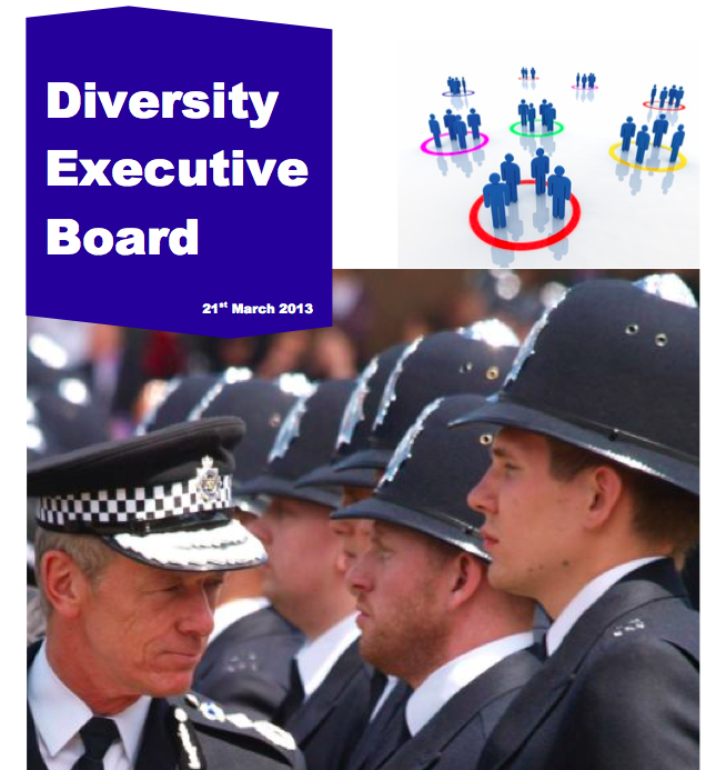 Met Diversity Executive